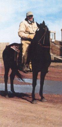 Shan's Bonnie Lassie (Anglo Arab) 15.2 HH
