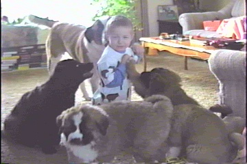 Mitch and pups